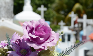 Hutchison Funeral Home blog flowers thumb