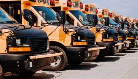 School buses in line on parking spot