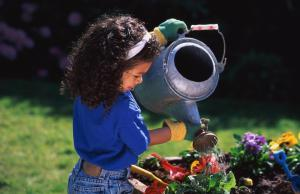 YOUNG BLACK GIRL WATERING FLOWERS